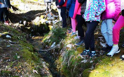 Sedmošolci poročajo iz doma Trilobit – sreda